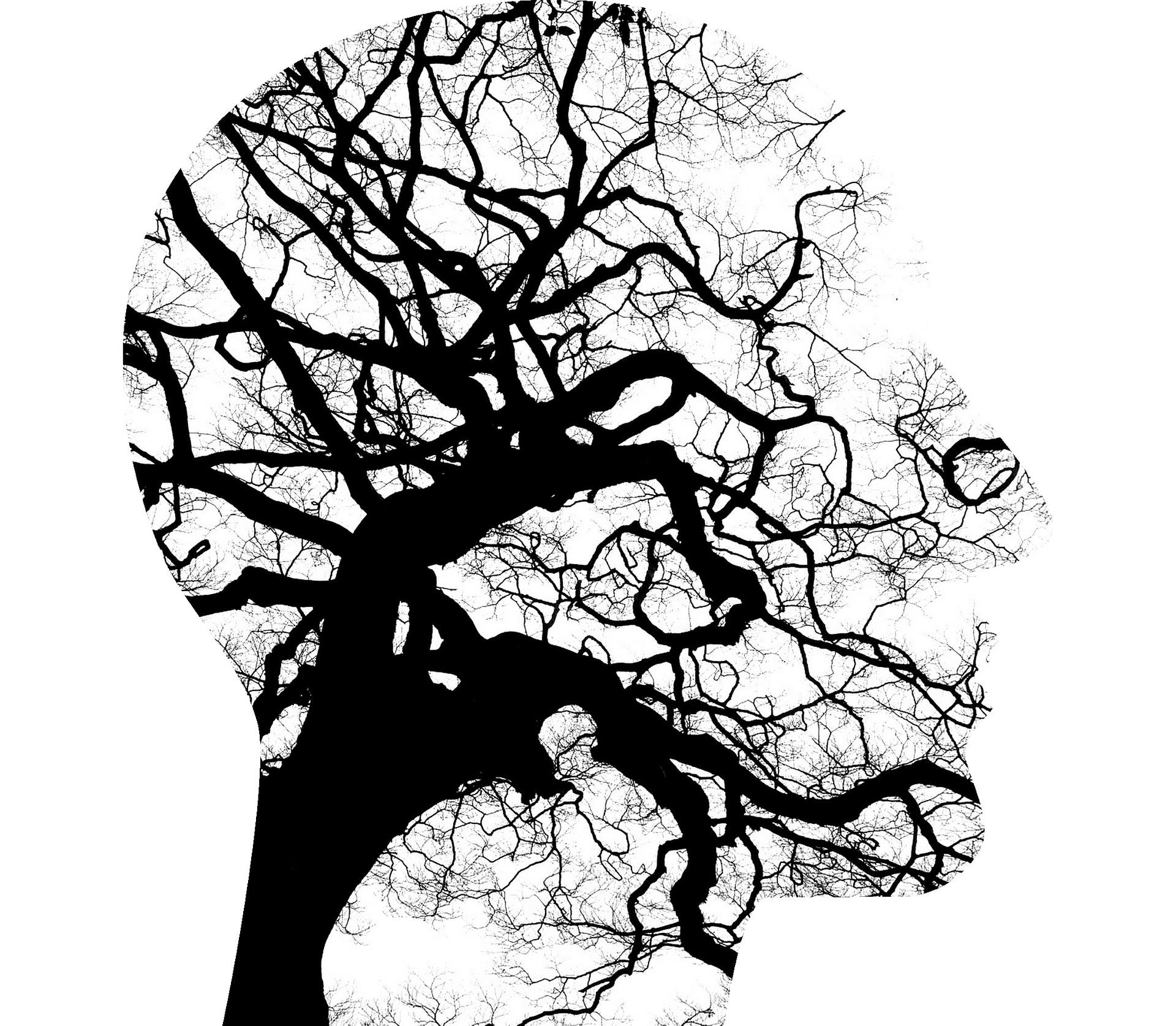 human-brain-like-tree