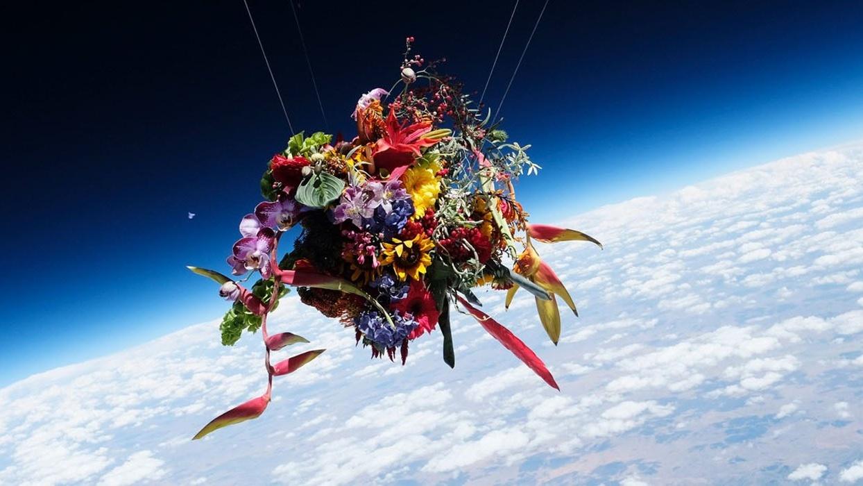 makoto-axuma-flowers-in-space