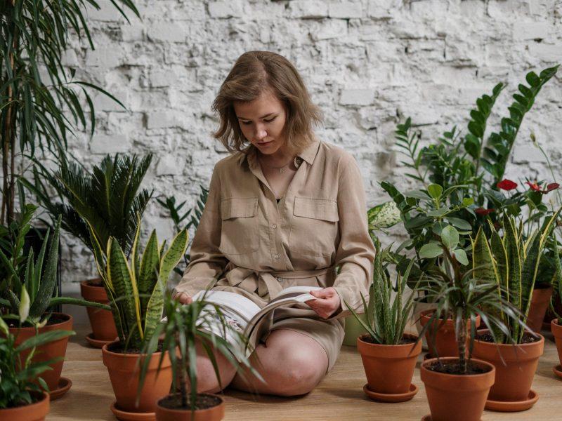 plants-fyta